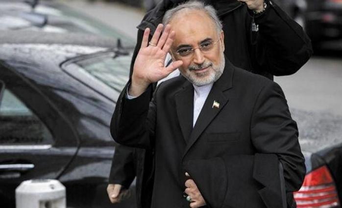 Ali Ekber Salihi, Nükleer Anlaşmayla İlgili Konuştu